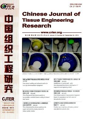 中国组织工程研究杂志北大核心期刊