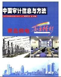 中国审计信息与方法