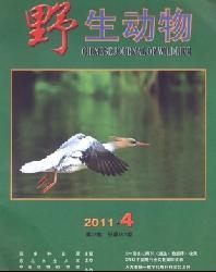 野生动物科普杂志